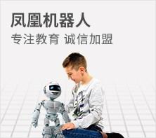 凤凰机器人