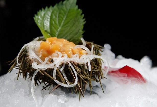 上井日本料理
